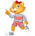 a cute cat catoon character vector image