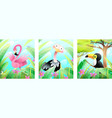 babirds toucan flamingo and ostrich for kids vector image vector image