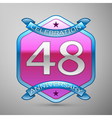 Forty eight years anniversary celebration silver vector image vector image