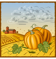 Landscape with pumpkins vector image vector image