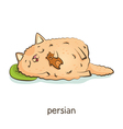 Persian Cat character isolated on white vector image vector image