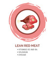 presentation template lean red meat a piece of vector image