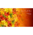 autumn background for your text with foliage vector image vector image