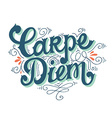 Carpe diem Quote Hand drawn vintage print with vector image