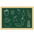 fruits and berries chalk sketch vector image