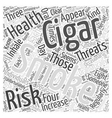 The Health Risks of Cigar Smoking Word Cloud vector image vector image