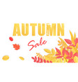 trendy autumn sale banner with paper style vector image