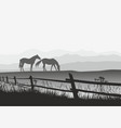two horses on meadow with fence vector image