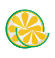 whole and slice lime citrus fruit icon vector image