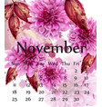 autumn november calendar with pink daisy flowers vector image vector image