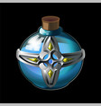 bottle with magical holy water vector image vector image