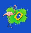 brazil flamingo vector image vector image