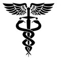 caduceus medical symbol two snakes sword vector image vector image