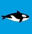 killer whale sea animal icon vector image vector image
