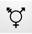 modern transgender symbol on white vector image