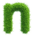 small grass letter n on white background vector image