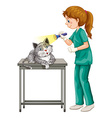 Vet checking up cats ear vector image vector image