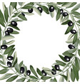 template frame from olive branches vector image