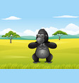 cartoon gorilla in the savannah landscape vector image