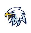 eagle head mascot logo template vector image