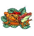 happy frog sitting on a leaf cartoon characters vector image