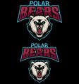 polar bears mascot vector image vector image
