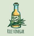 rice vinegar icon hand drawn style vector image