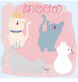 set of cute cat and meow word cartoon vector image vector image