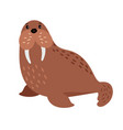 walrus cartoon animal vector image