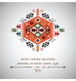 colorful decorative element on native ethnic style vector image