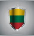 europe flags series lithuania icon vector image vector image