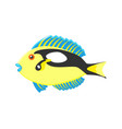 exotic coral fish isolated on vector image