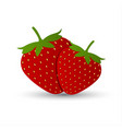 two red strawberries isolated vector image