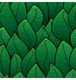 green leaf background vector image vector image