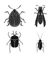 insect and fly sign set of vector image