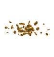 realistic gold coins explosion isolated on white vector image vector image