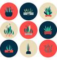 set icons indoor flowers vector image