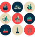 set of icons of indoor flowers vector image vector image