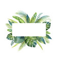watercolor banner tropical leaves vector image vector image