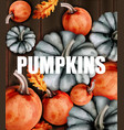 autumn card with pumpkins watercolor style vector image vector image