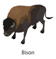bison icon isometric style vector image