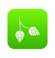 branch of hops icon digital green vector image vector image