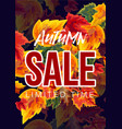 bright design seasonal sale poster vector image