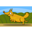cartoon happy shaggy playful dog vector image vector image