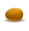exotic kiwi fruit icon cartoon style vector image