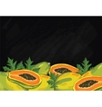 Papaya fruit composition on chalkboard vector image