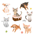 Pets set vector image vector image