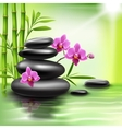 Realistic spa background vector image vector image