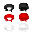 red black and white head bandanas vector image vector image