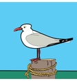 Sea gull sitting on the pier vector image vector image